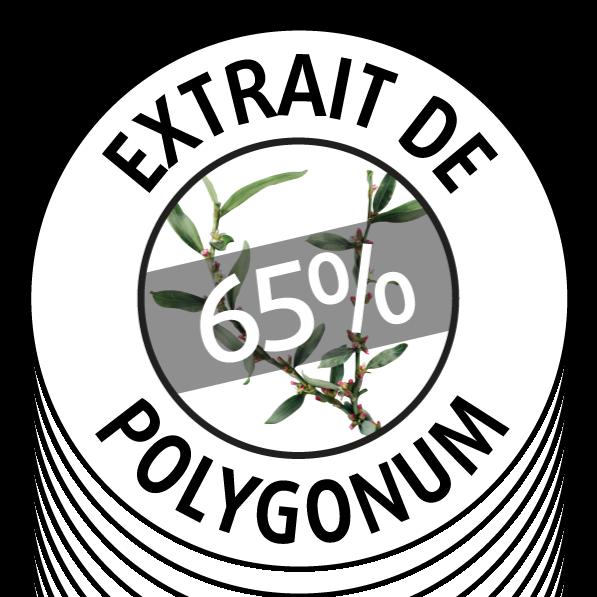 65% polygonum
